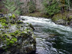 Koksilah River. Cowichan Valley.