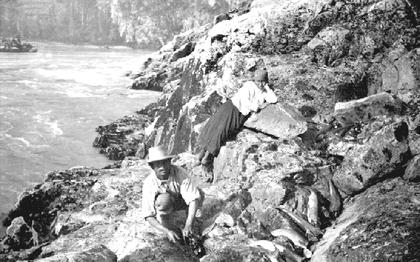 Fraser River fishing 1906
